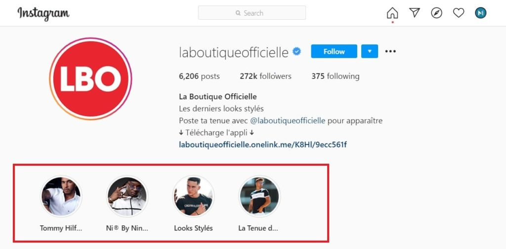 Exemple de Biographie Instagram