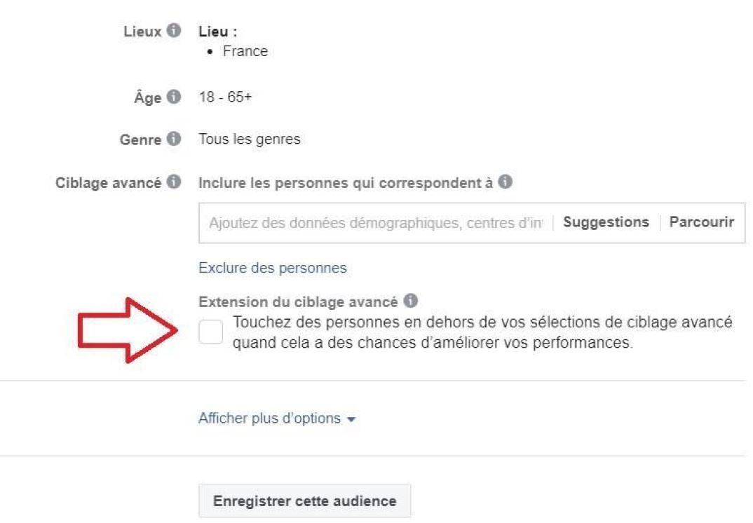 L'extension du ciblage dans une pub Facebook